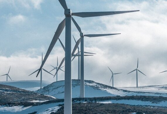 The fastest growing occupation in past decade: Wind Turbine Technician